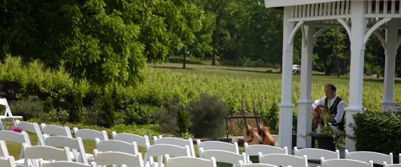 Riverbend Vineyard Pictorial